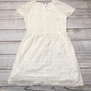 Free People Candy Woven Lace Dress (0329)